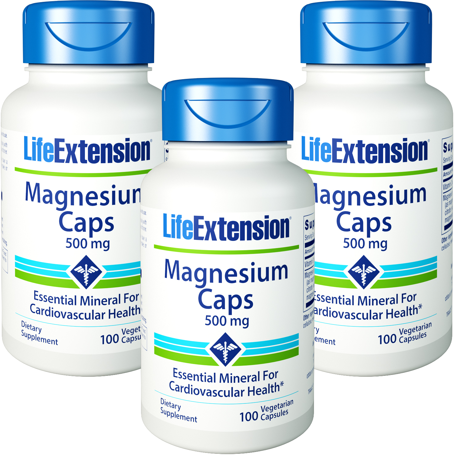 Life Extension Magnesium Caps 500 mg 100 Vegetarian Capsules 3 Bottles