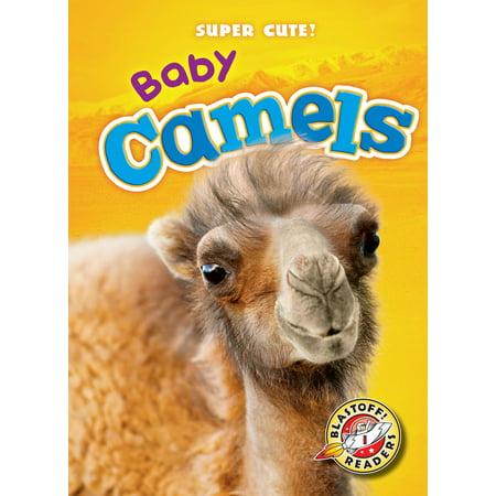 Baby Camels - eBook Ergo Baby Camel