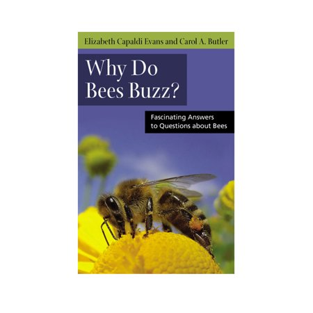 Why Do Bees Buzz? : Fascinating Answers to Questions about Bees