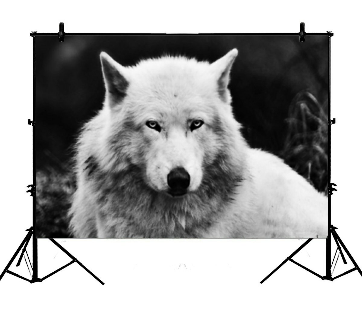 Gckg 7x5ft wolves white wolf animals polyester photography backdrop studio photo props background