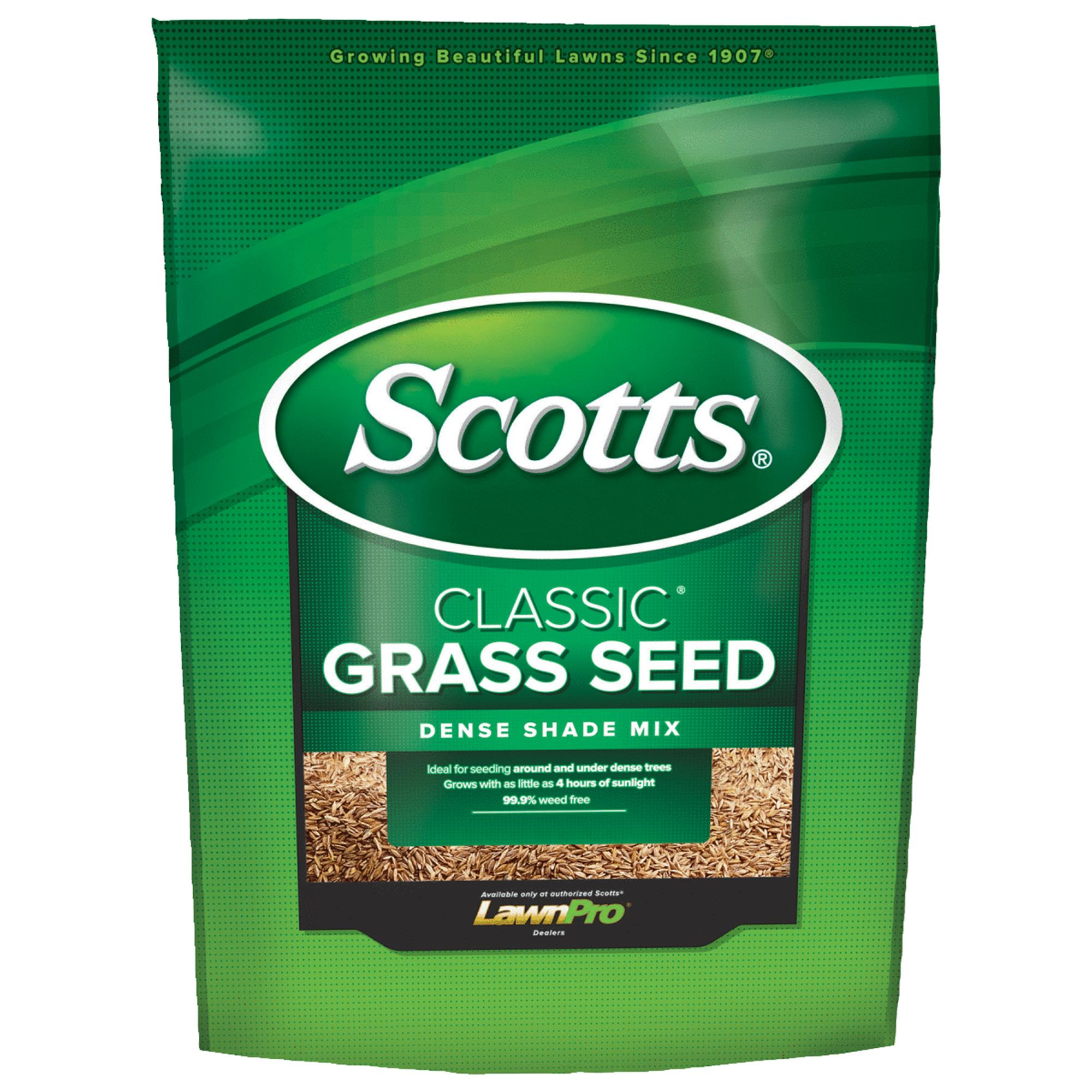 Scotts Classic Dense Shade Grass Seed