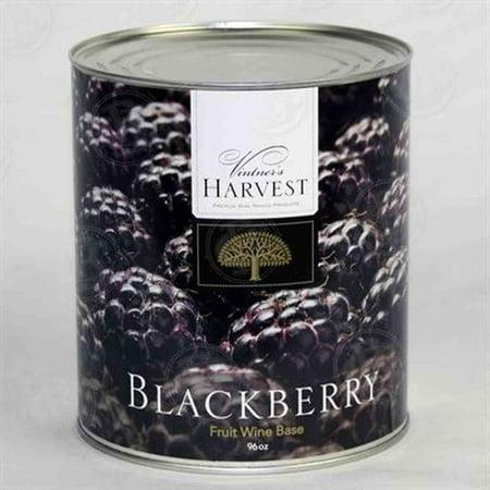 - Vintners Harvest Wine Base, Blackberry 96 oz can