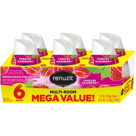 (2 pack) Renuzit Gel Air Freshener, Forever Raspberry, 7 Ounce, 12 Count