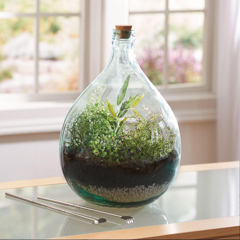 Plants Terrarium Starter Set - Small