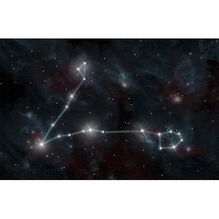 An artists depiction of the constellation Pisces the Fish The constellation includes the stars Alpha Piscium and Eta Piscium Pisces is one of the twelve astrological signs of the Zodiac Poster Print
