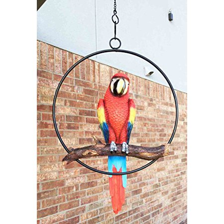 Patio Home & Garden Hanging Scarlet Macaw Parrot Perching on Branch In Metal Round Ring Sculpture For Nature Lovers Tropical Bird Collectors