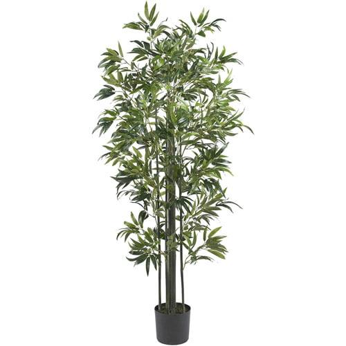6' Bamboo Silk Tree, Green Trunks