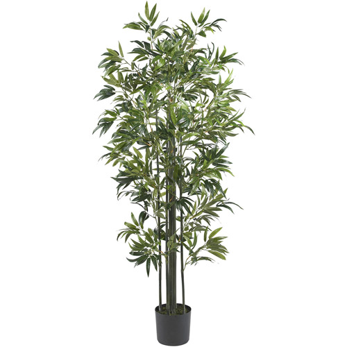 6' Bamboo Silk Tree, Green Trunks