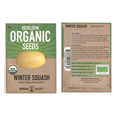 Vegetable Spaghetti Winter Squash Garden Seeds - 4 g Packet - Organic, Heirloom, Non-GMO - Vegetable Gardening