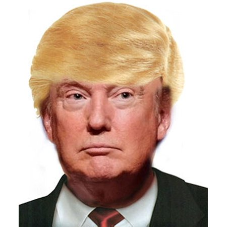 Donald Trump Wig Costume Blonde Comb Over Wig Hair Mr. Billionaire Costume Wig