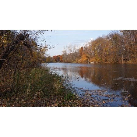 Laminated Poster Fall Three Rivers Park Maple Grove Poster Print 11 x 17 (Indian River Groves)