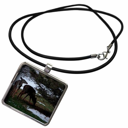 3dRose Twin Deer by a Pine Tree - Necklace with Pendant (ncl_12337_1)