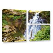 Brushstone Brandywine Falls 2 Wall Art
