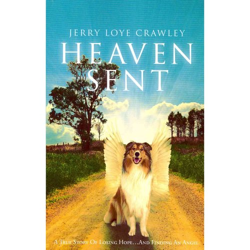 Heaven Sent: A True Story of Losing Hope...and Finding an Angel