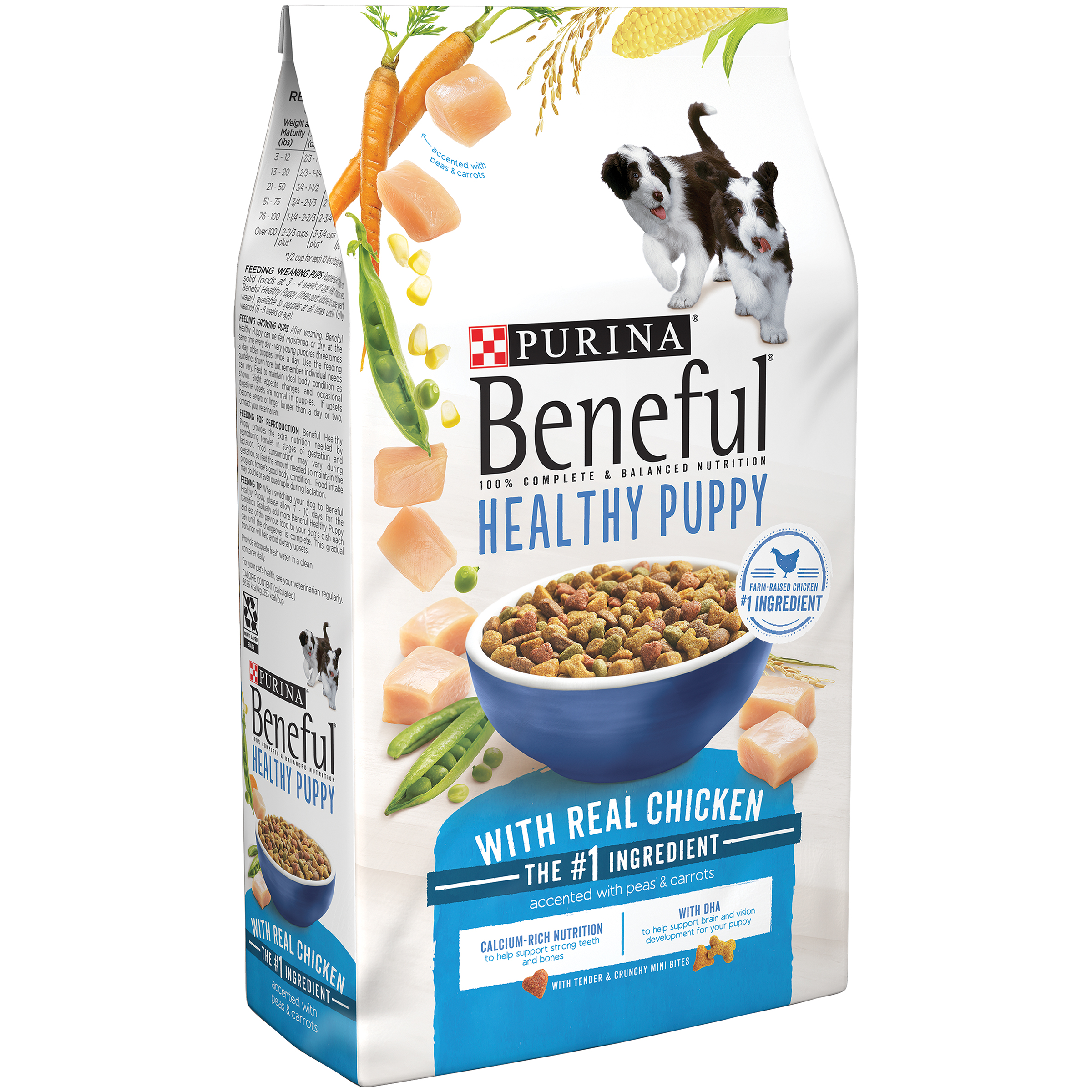 Purina Beneful Healthy Puppy Dry Dog Food 6.3 lb. Bag