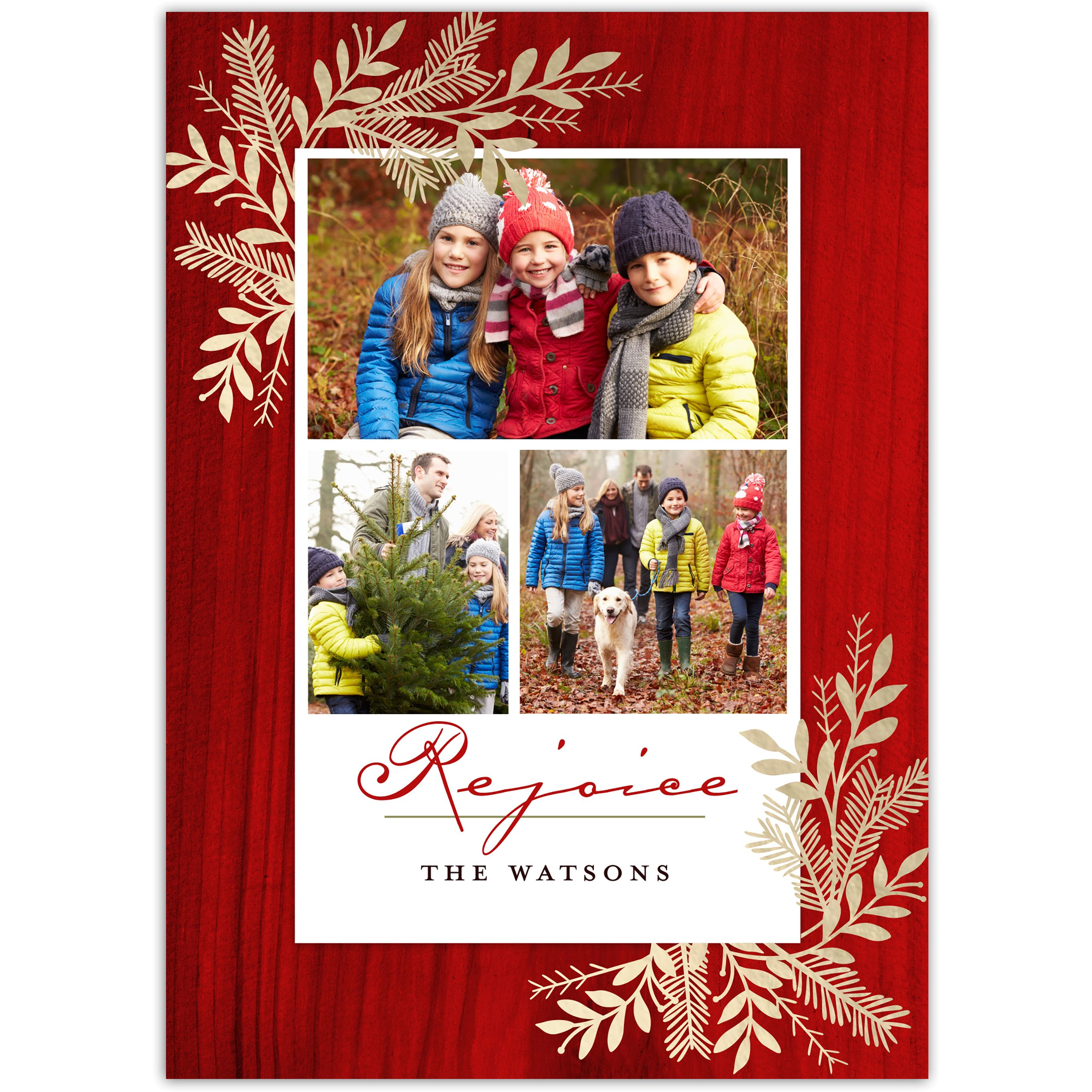 Blessed Branches - 5x7 Personalized Religious Holiday Card