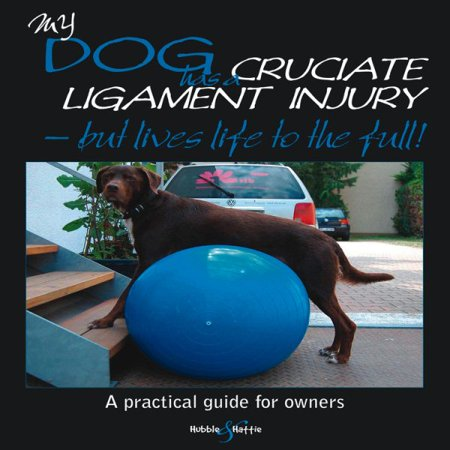 My Dog Has Cruciate Ligament Injury - But Lives Life to the