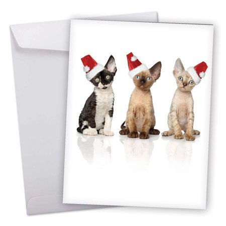 J6687JXSG Jumbo Merry Christmas Card: 'Santa Cats' Featuring Sweet Kitties Wearing Santa's Hats Greeting Card with Envelope by The Best Card