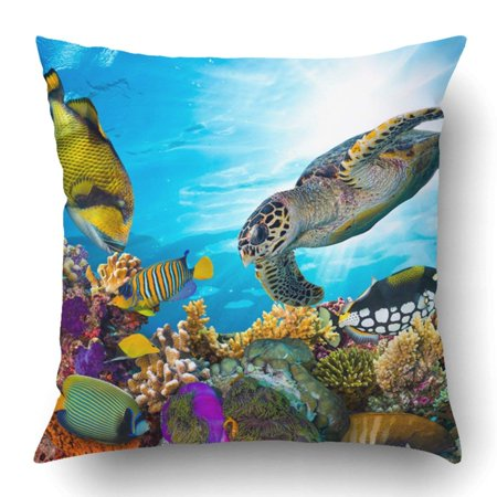 BSDHOME Colorful Coral Reef With Many Fishes And Sea Turtle Pillowcase Pillow Cushion Cover 18x18 inch - image 1 of 1