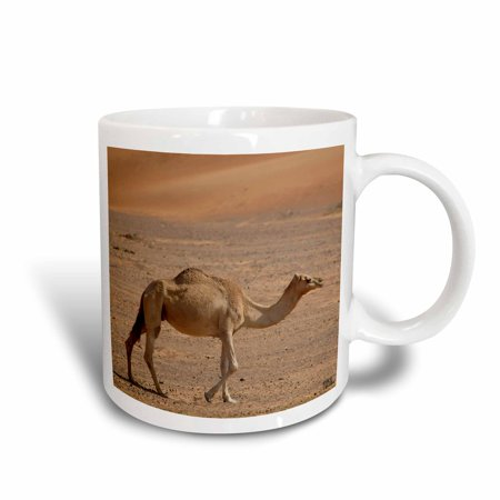 3dRose The wind molds the sand into beautiful dunes, offering a unique natural paradise 3, Ceramic Mug, 11-ounce
