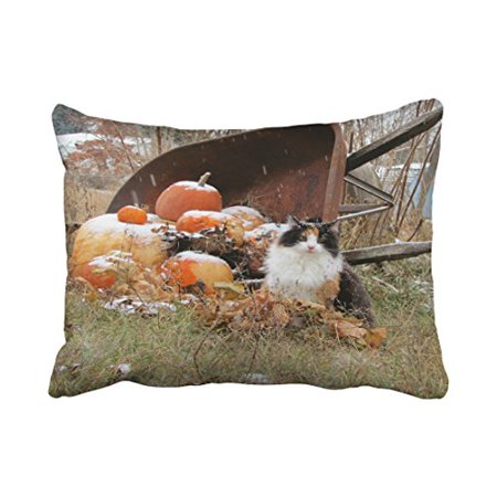 WinHome Decorative Pillowcases Calico Cat Wheelbarrow Of Pumpkins Throw Pillow Covers Cases Cushion Cover Case Sofa 20x30 Inches Two Side - Decorative Wheelbarrow