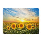 GODPOK Sunrise Green Summer Field of Blooming Sunflowers on Sunset Yellow Sky Flower Rug Doormat Bath Mat 23.6x15.7 inch