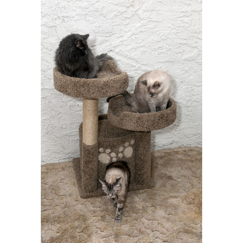 New Cat Condos 34'' Premier Double Perch Solid Wood Cat Condo by Overstock