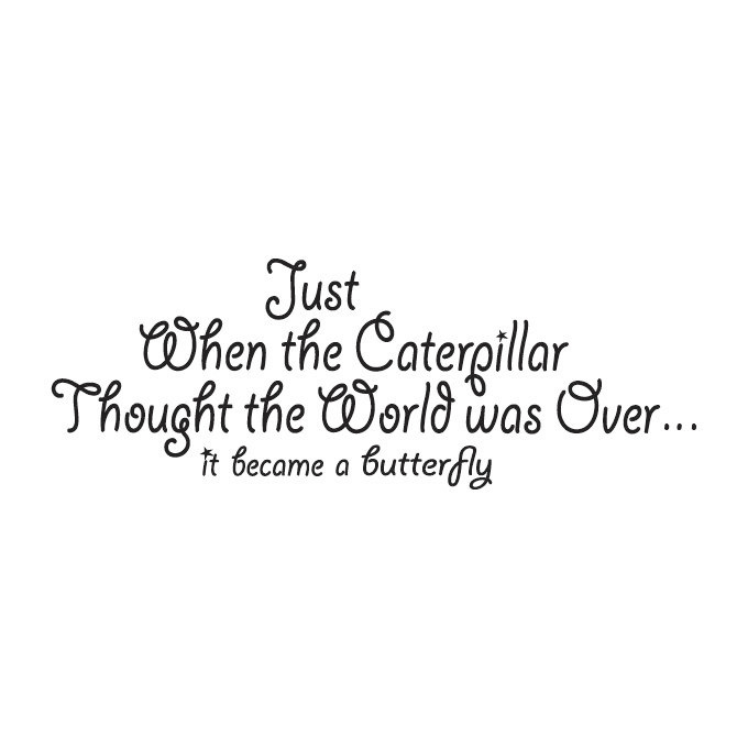 Just when the Caterpillar Thought the World was Ove.. Vinyl Quote - Large