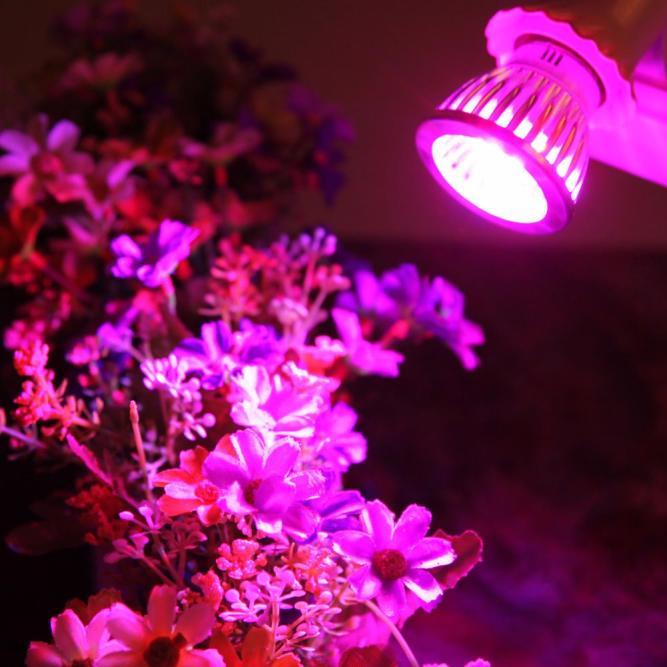 E27 10W LED Grow Light Veg Flower Indoor Plant Hydroponics Full Spectrum Lamp