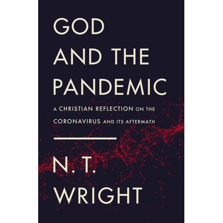 God and the Pandemic : A Christian Reflection on the Coronavirus and Its Aftermath (Paperback)