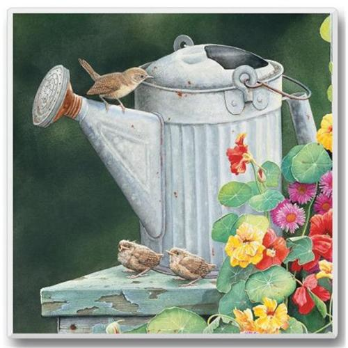 Highland Graphics Take Flight Coasters - Wren on Watering Can