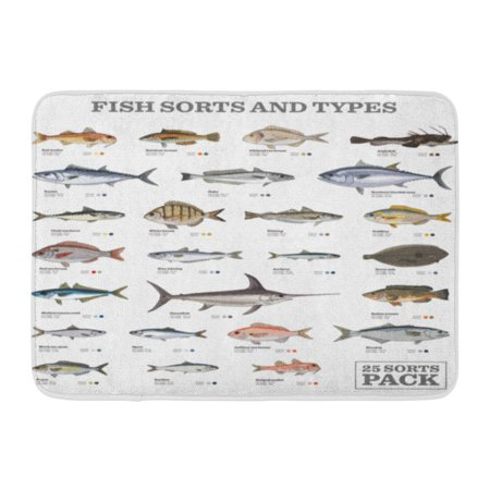 SIDONKU Red Hake Twenty Five Different Fish Sorts and Types Colored Blue Info Sole Doormat Floor Rug Bath Mat 23.6x15.7 inch