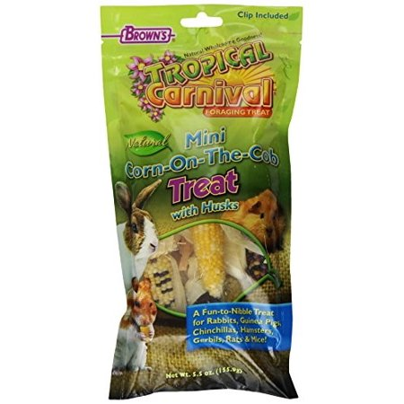 FM Brown's Tropical Carnival Mini Corn-On-The-Cob With Husks Small Animal Treat, 5.5 - Carnival Treats