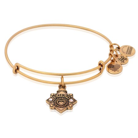 Alex and Ani Friend Charm Bangle Bracelet 2018 - Rafaelian Gold - A18BILY14RG