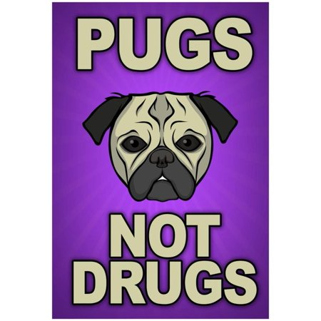 Pugs Not Drugs Poster - 13x19
