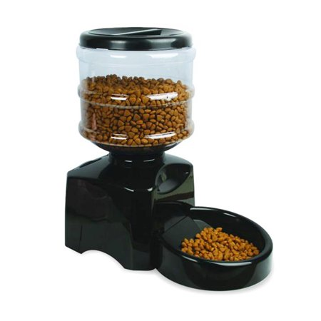 Cat Food Container With Timer