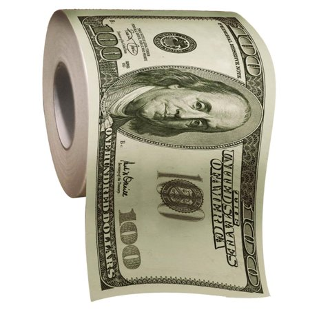 $100 One Hundred Dollar Bill Toilet Paper Roll Money $ TP party supply supplies