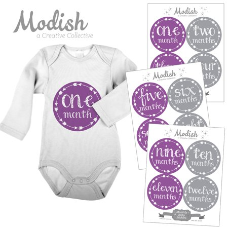 Modish Monthly Baby Stickers, Girl, Arrows, Tribal, Purple, Gray, Baby Photo Prop, Baby Shower Gift, Baby Book Keepsake - Photo Stickers