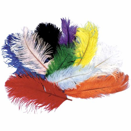 Ostrich Plumes Adult Halloween Accessory