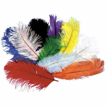 Ostrich Plumes Adult Halloween Accessory - Orange And Black Costumes