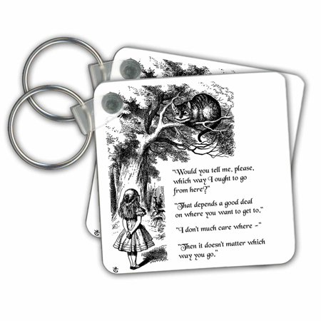 Cat From Alice In Wonderland (3dRose Which way ought I go from here Chesire cat - Alice in Wonderland quote - Key Chains, 2.25 by 2.25-inch, set of)