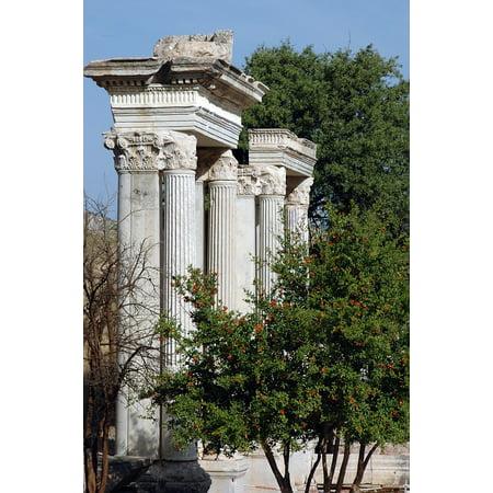 LAMINATED POSTER Asia Minor Temple Ruins Greek City Remains Ephesus Poster Print 24 x 36