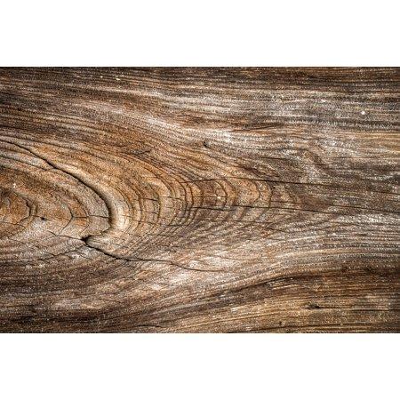 Canvas Print Wild Hardwood Pattern Wall Texture Wood Interior
