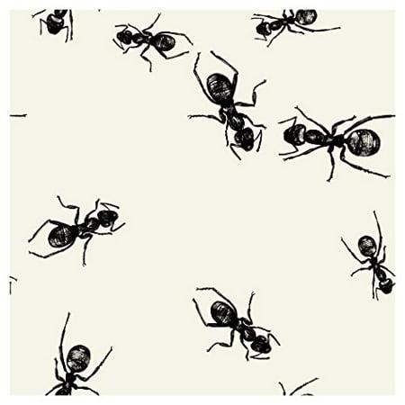 BN 12/24CT 3P PICNIC ANTS - image 1 of 1
