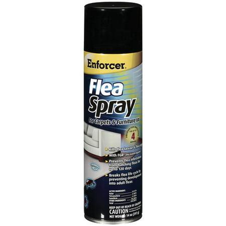 Enforcer Xx Flea Spray For Carpets Furniture 20 Oz