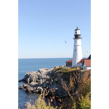 East Coast Lighthouses - Laminated Poster East Coast Landmark Lighthouse Coastline Coast Poster Print 24 x 36