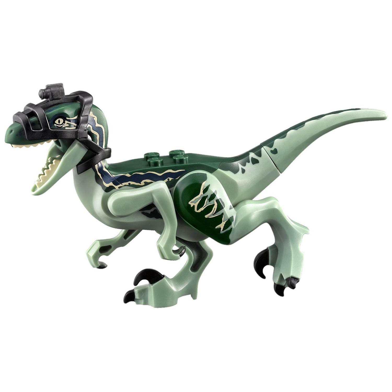LEGO Jurassic World 75917 Raptor Rampage Delta Velociraptor Figure No Head