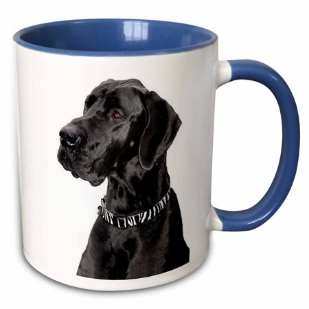 3dRose Black Great Dane - Two Tone Blue Mug, (Black And White Great Dane With Blue Eyes)