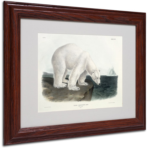 "Trademark Fine Art ""Ursus Maritimus Polar Bear"" Canvas Art by John James Audubon, Wood Frame"