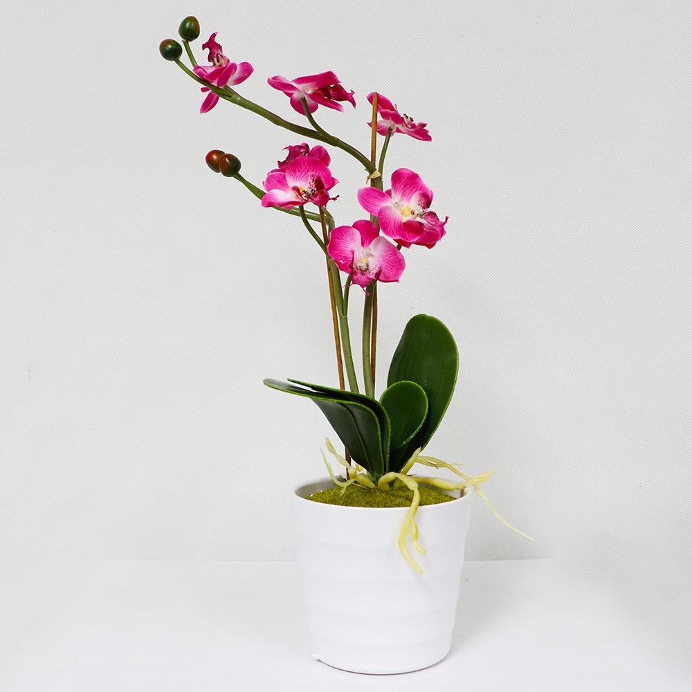 Puleo International 9 in. Indoor Artificial Flower and Succulent Arrangement in Planter